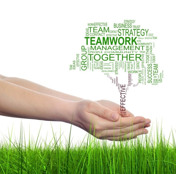 NOW_Collaboration and Strategy (1)